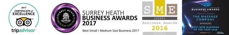 The Massage company - Franchise Awards